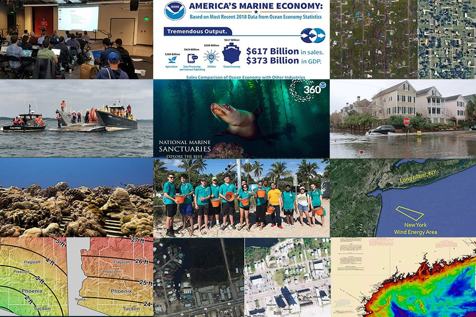 collage of images for annual report