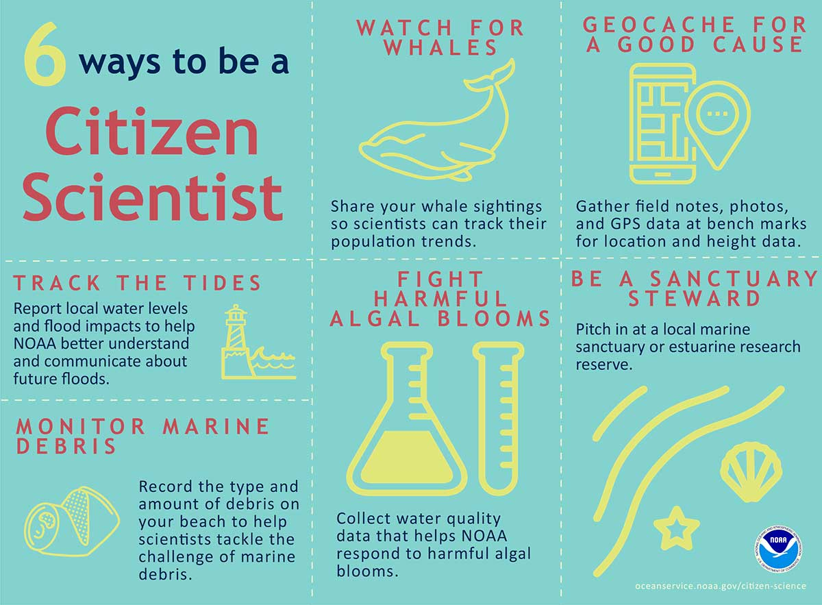 NOAA citizen science infographic