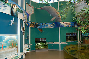 environmental learning center at Rookery Bay National Estuarine Research Reserve