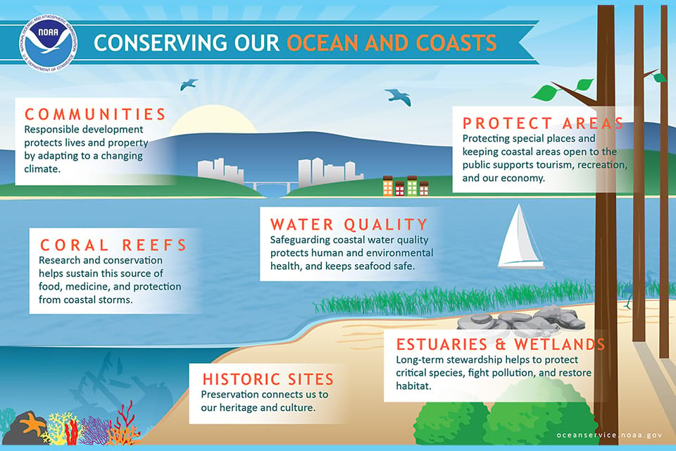 An infographic on conserving our ocean and coasts