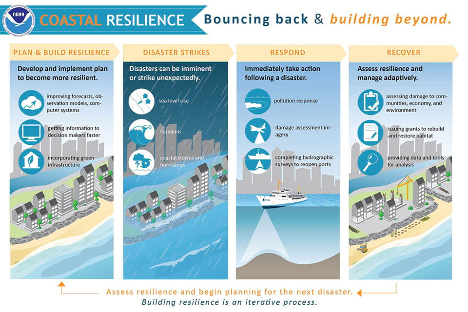 An infographic about building coastal resilience