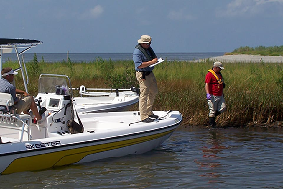 NOAA restoration project team assessing oiling of marshes in Barataria Bay, Lousiana. After an oil spill, NOAA conducts studies to identify the extent of damage, the best methods for restoring natural resources, and the type and amount of restoration required.