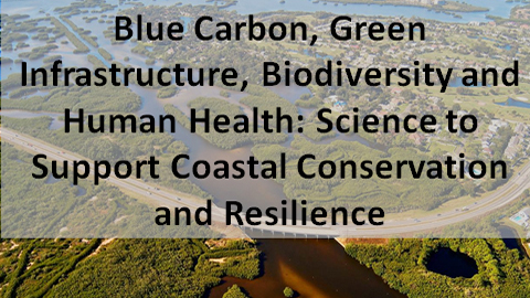 Blue Carbon, Green Infrastructure, and Nature-Human Health Connections