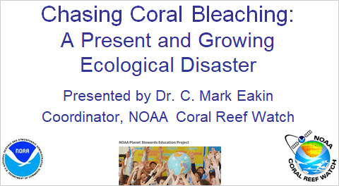 Chasing Coral Bleaching: A Present and Growing Ecological Disaster