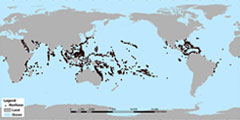 Where Are Reef Building Corals Found - Corals: NOAA's National ...