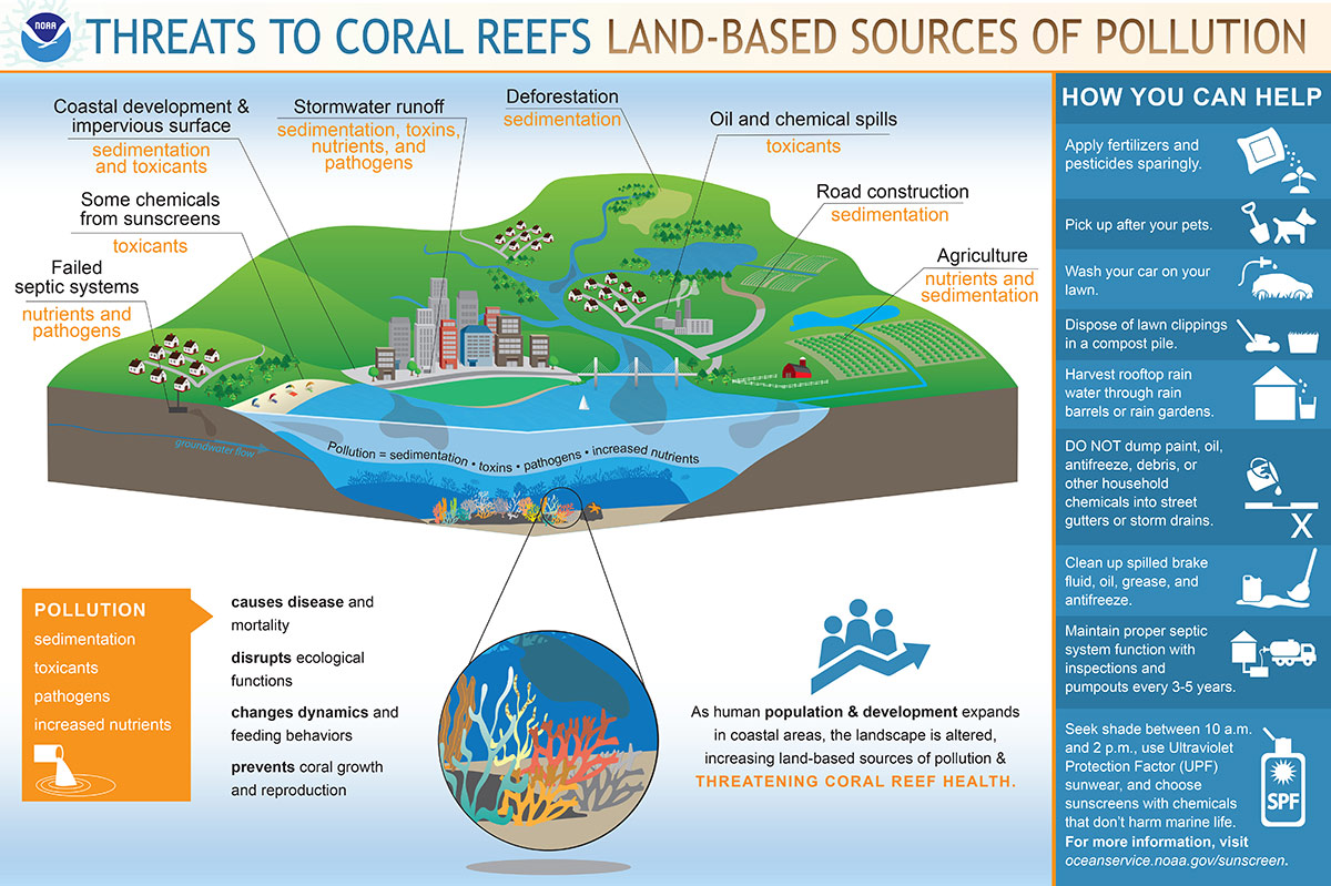 infographic showing threats to coral reefs pollution