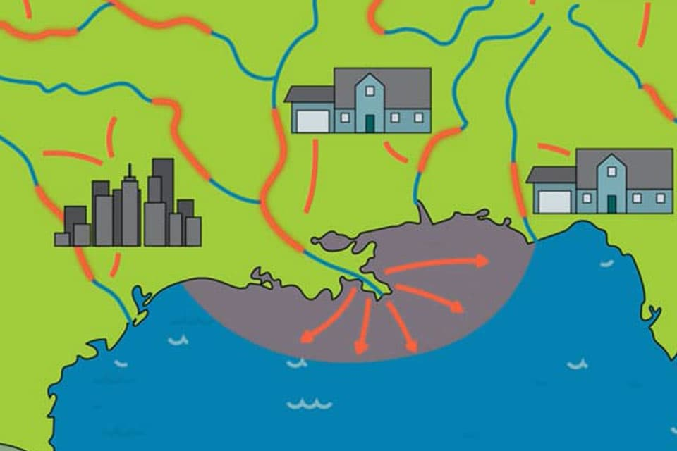 animation showing nutrients flowing from rivers into Gulf of Mexico