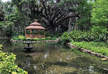 Gazebo and oak tree at Washington Oaks Gardens State Park. Photo courtesy Washington Oaks Gardens State Park