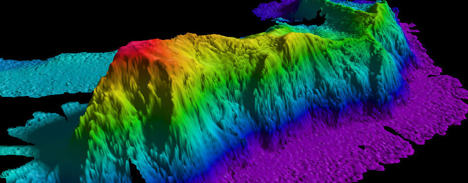 A sonar image of a guyot