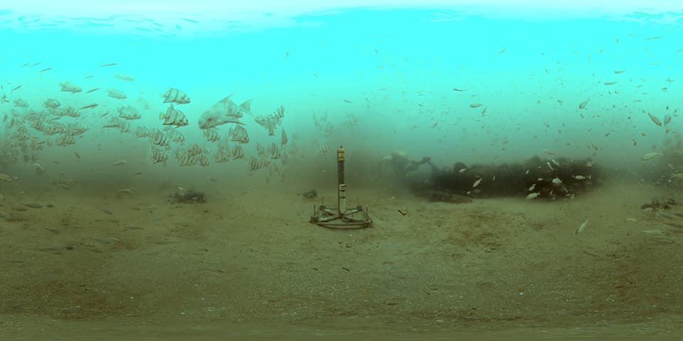 A hyrdophone is mounted to the sea floor as small fish swim all around the scene kicking up sediment