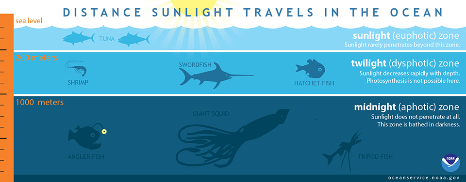 illustration of how far light travels in the ocean.