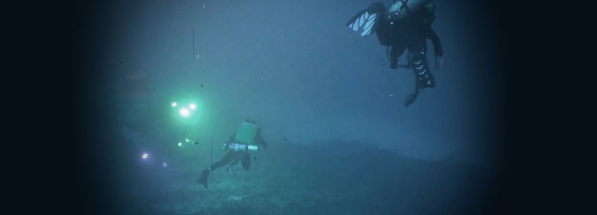 divers in the mesophotic zone