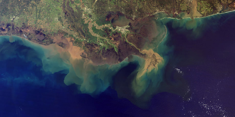 satellite view of Mississippi River meeting the Gulf of Mexico