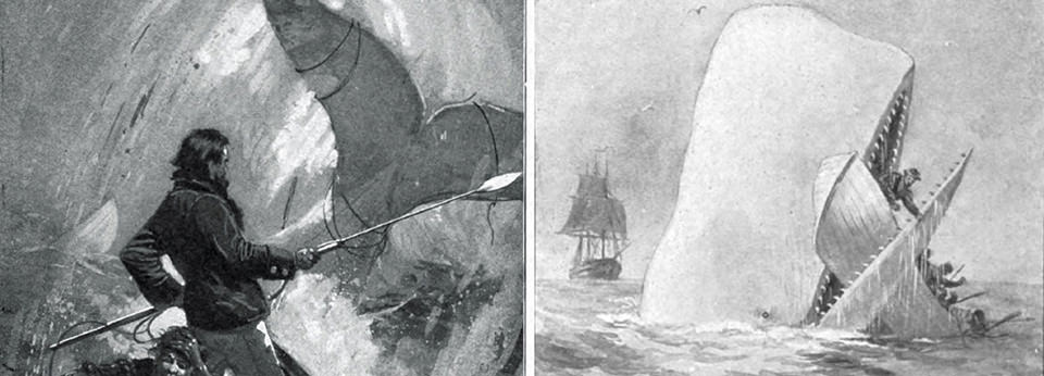 Illustrations from Moby-Dick, published in 1851 and authored by Herman Melville.