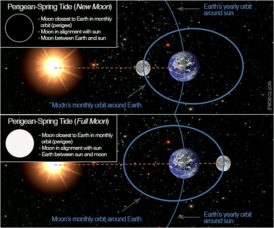 graphic showing new and full moon at perigee