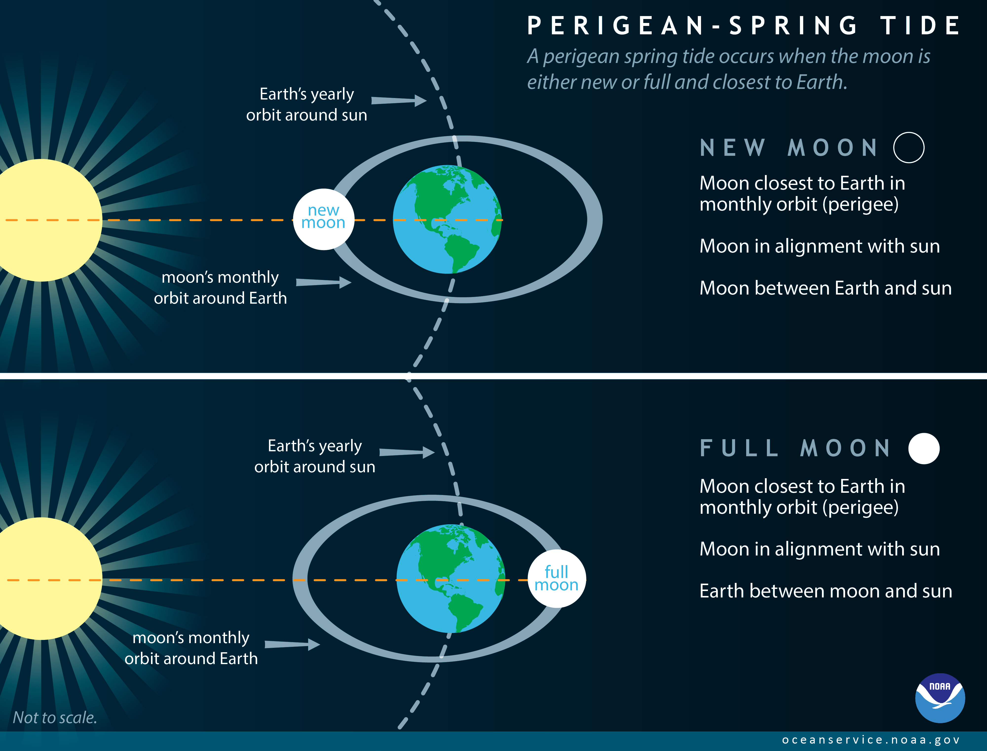 What is a perigean spring tide a perigean spring tide occurs when the moon is either new or full and closest to earth pooptronica Gallery