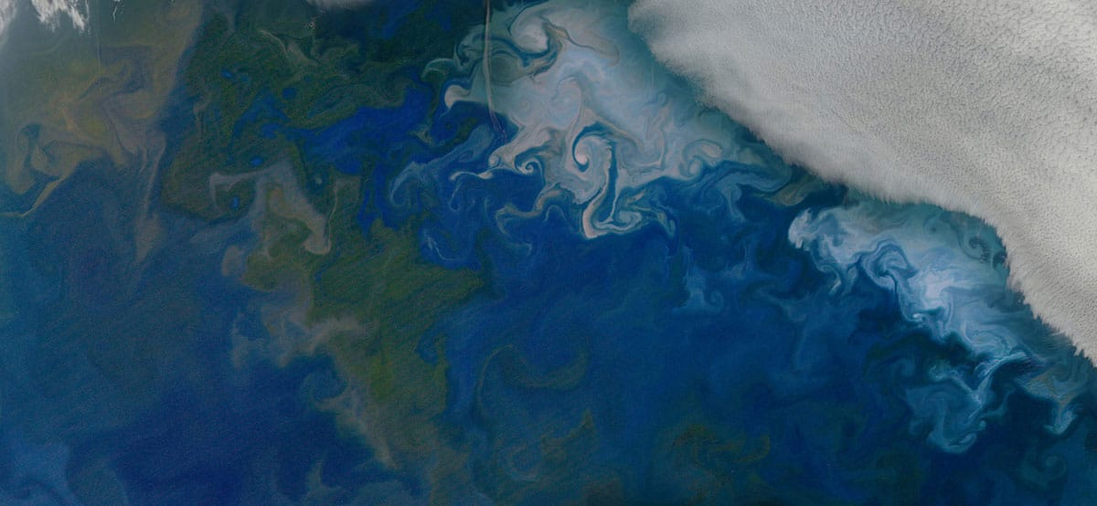 Phytoplankton blooms in the Barents Sea, shown in natural color from NASA's Aqua satellite on July 10, 2014. The solid white area in the top right corner is cloud cover. Credit: NASA's Earth Observatory