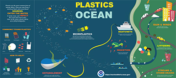 Link to original version of the 'Plastic in the Ocean' infographic
