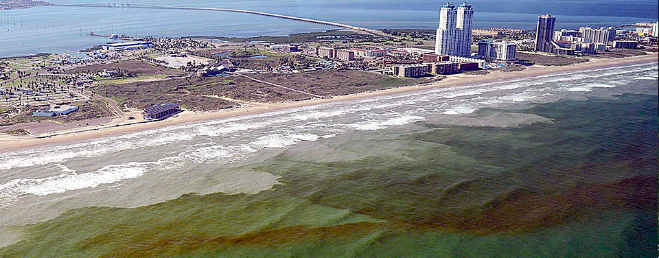 Harmful algal blooms, or HABs, occur nearly every summer along the nation's coasts. Often, the blooms turn the water a deep red.