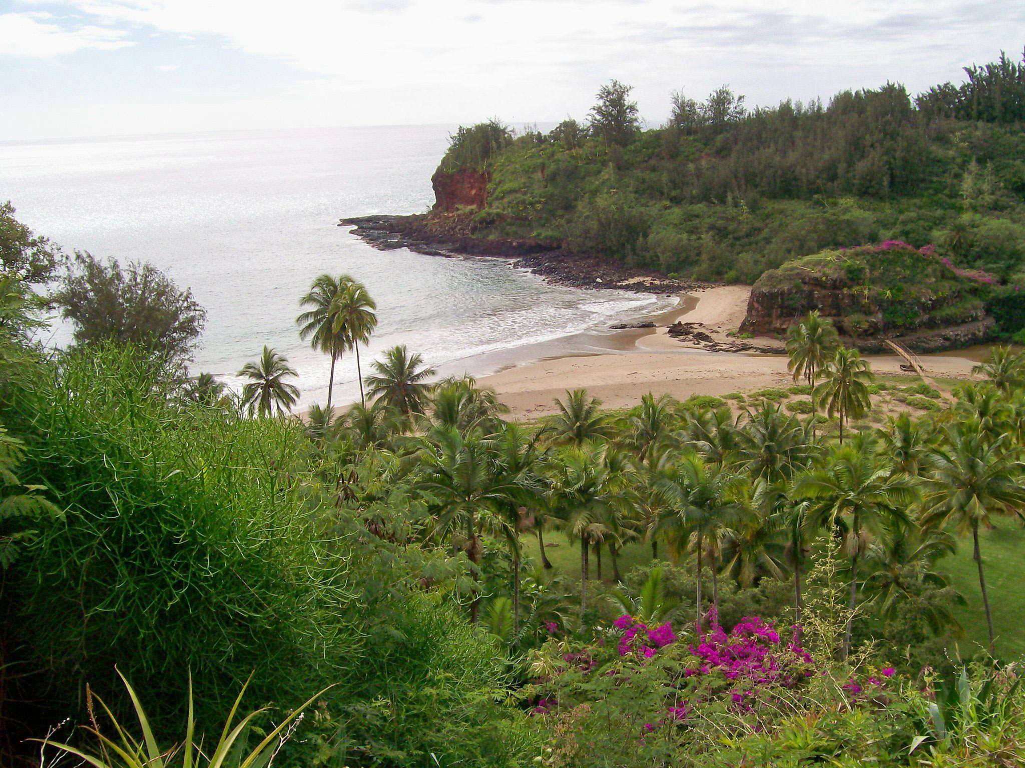 B Ocean Views Photo Contest