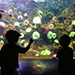 Children at aquarium