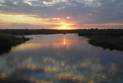 Sunset over the marsh at the Guana Tolomato Matanzas National Estuarine Research Reserve in Florida. The Guana Tolomato Matanzas Reserve contains the northernmost extent of mangrove habitat on the U.S. east coast, some of the highest dunes in Florida (measuring 30-40 feet), and one of the few remaining 'inlets' in northeast Flordia not protected by a jetty.