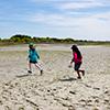 Children explore the Rachel Carson Reserve