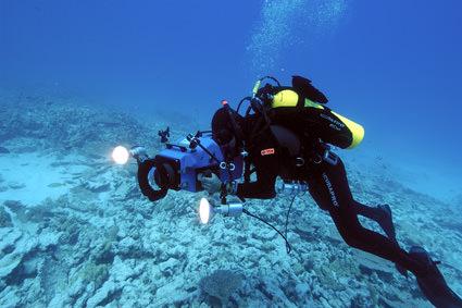 Rapture Reef filming. Image credit: Robert Schwemmer, NOAA National Marine Sanctuaries