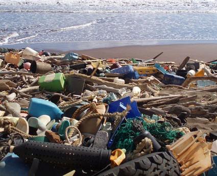 Kanapou Bay Debris