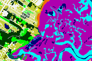 image showing Coastal Change Analysis Program land cover classes from August 2013