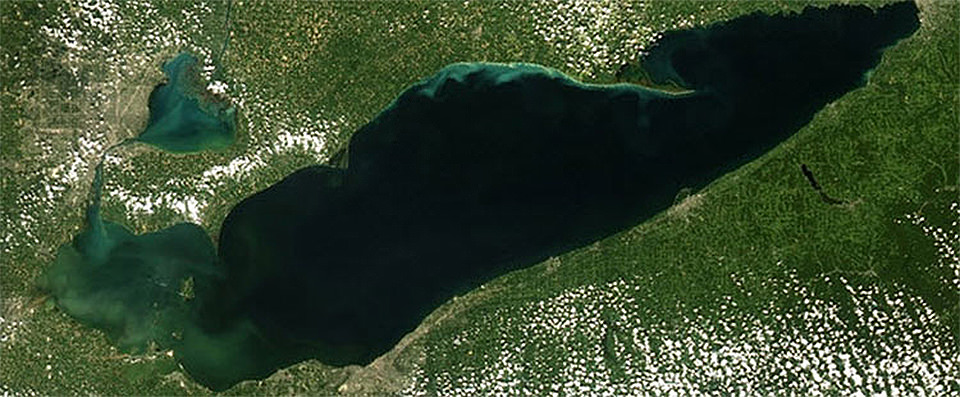 satellite image of lake erie with visible HABs