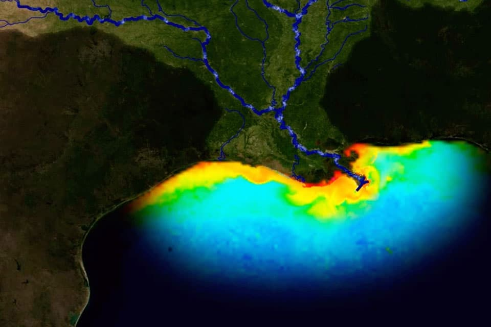 graphic showing nutrient pollution in Gulf of Mexico