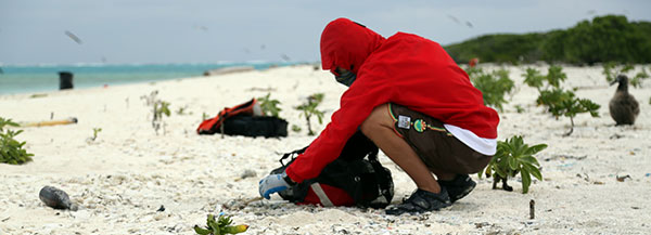 Cleaning up marine debris on a beach. Credit: NOAA CREP