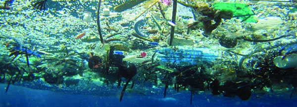marine debris floating at the water's surface