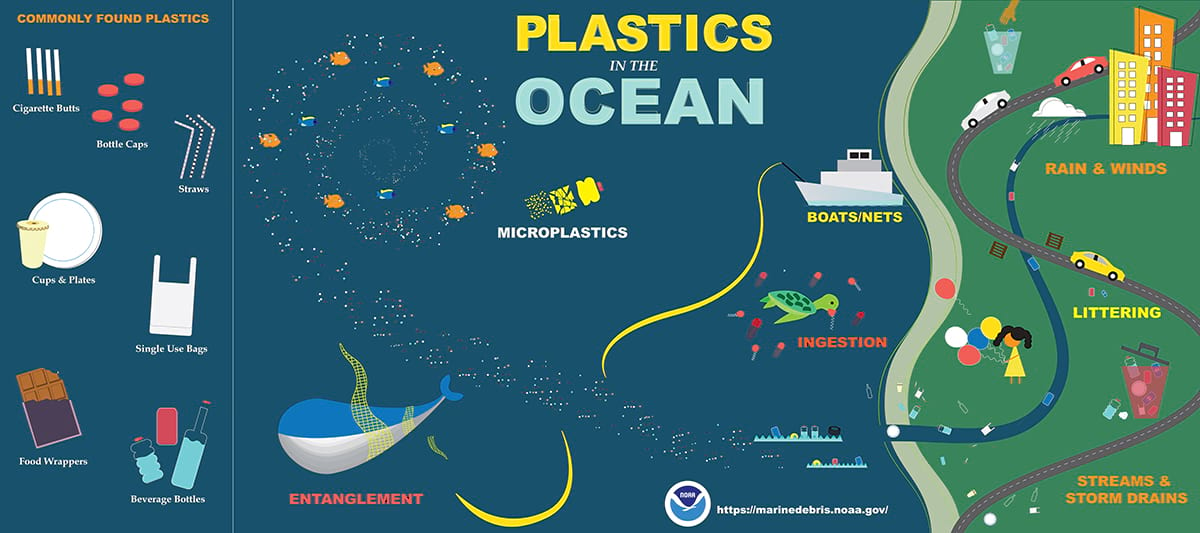 infographic that shows plastics in the ocean
