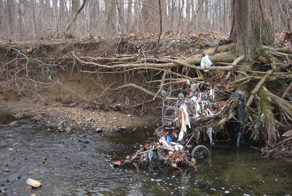 Tree trash and garbage to the water