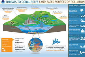 coral reef and pollution infographic