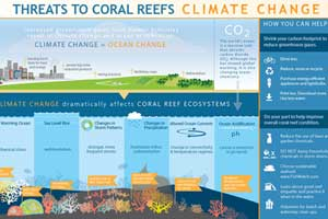 coral reef and climate infographic