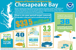 infographic thumbnail: Impacts of Derelict Crab Pots in the Chesapeake Bay