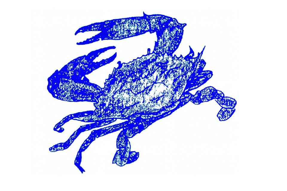 maryland crab art