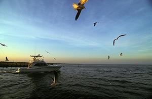 a recreational boat