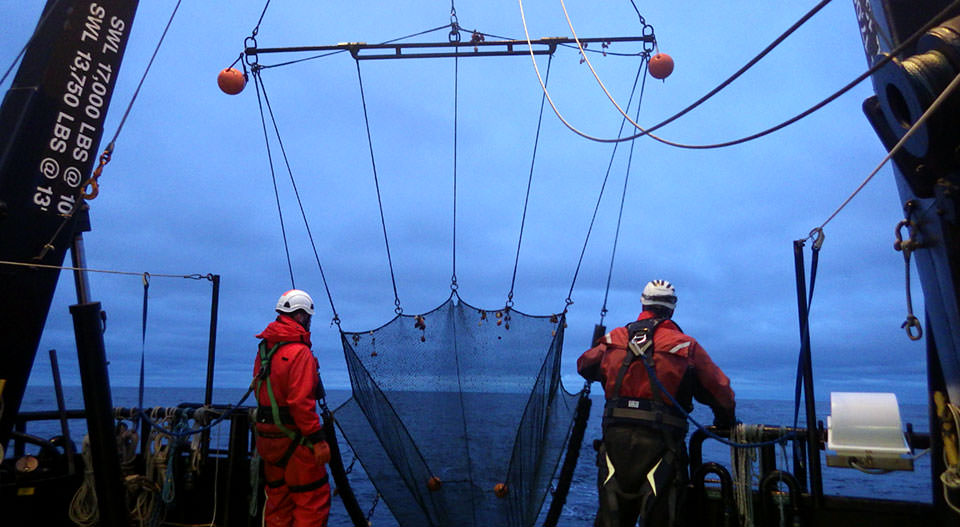 two researchers deploy a beam trawl from a ship