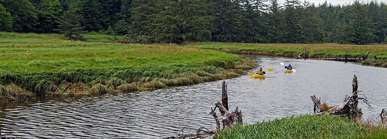South Slough Estuarine Reserve Turns 40