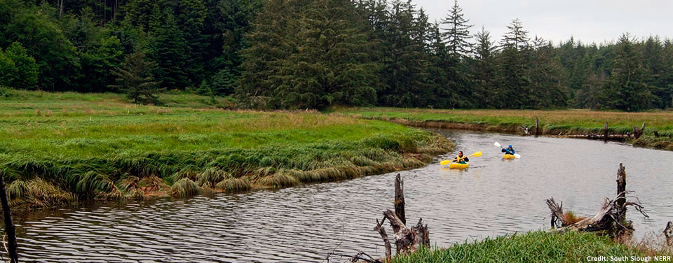 Kayakers enjoy an outing near Dalton Marsh in Oregon's South Slough National Estuarine Research Reserve.