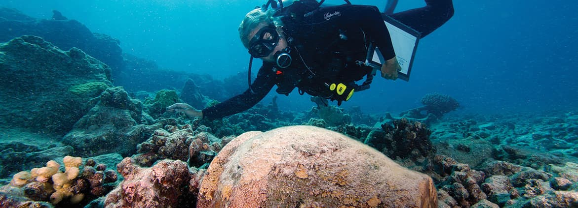 diver examines shipwreck of Two Brothers