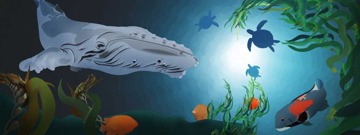 a colorful graphic showing animation of whales, turtles, and other sea creatures