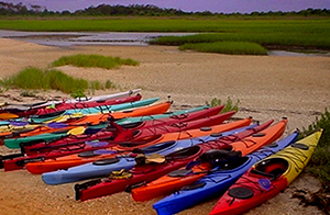 Southeast Coast Saltwater Paddling Trail Conveys the Beauty of Conservation Partnerships