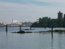 Lower Duwamish River