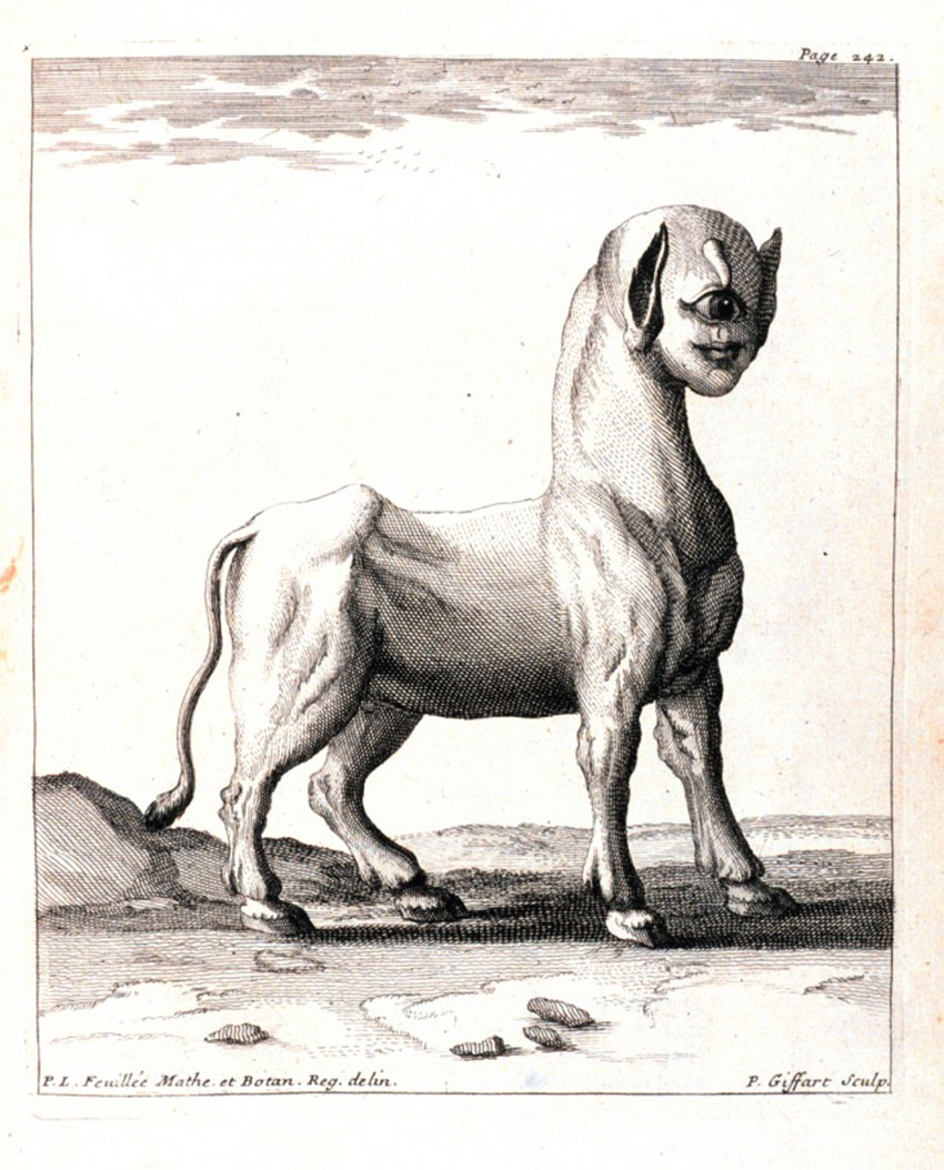 A Monster Born of a Ewe in Journal des Observations Physiques, Mathematiques et Botaniques by Louis Feuillee, 1714