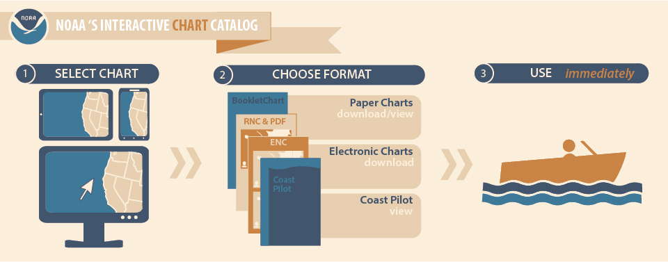 Infographic Of Chart Catalog